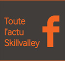Page Facebook Skillvalley